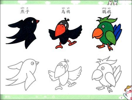 小宝贝学画画:鸟类·植物