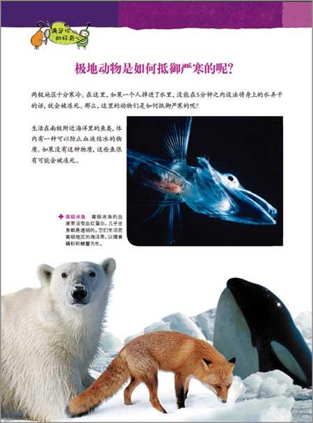 动物星球3d科普书极地动物:耐寒勇士(附赠精美3d眼镜