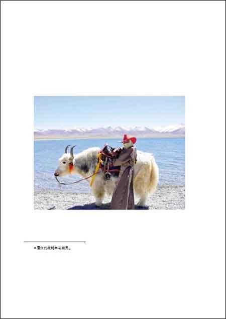 逃到西藏,也逃不出爱情