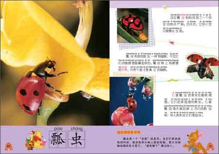 动物百科(套装共5册)》是一套适合幼儿认知汉字的