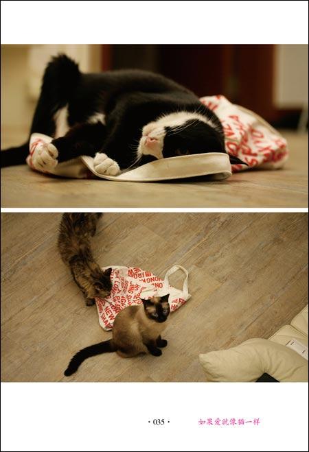 自私的猫咪