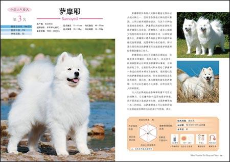中国超人气狗大排名