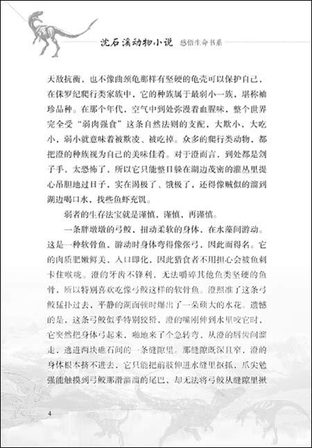 沈石溪动物小说•感悟生命书系:五彩龙鸟