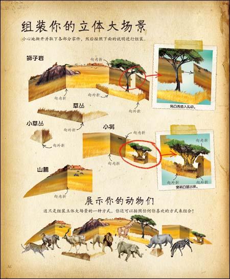 科学探险手记:非洲动物:亚马逊:图书