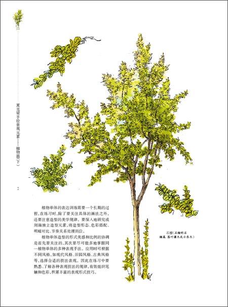 《夏克梁手绘景观元素:植物篇(下)》 夏克梁【摘要