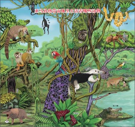 小学生着迷的第一堂自然课:热带雨林