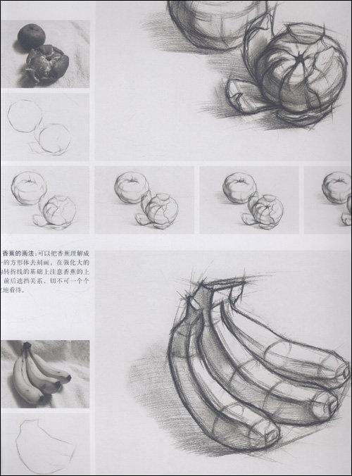 静物结构素描临摹内容|静物结构素描临摹版面设计
