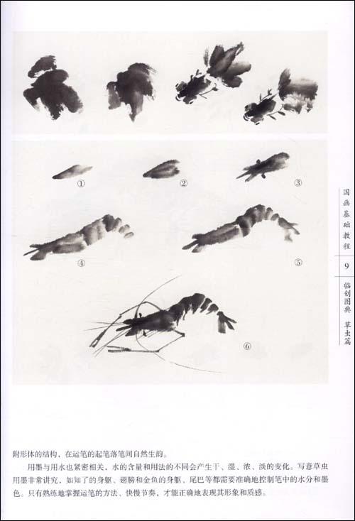 中国画虾的分步骤示范图片大全