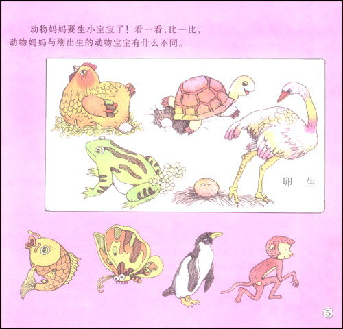 幼儿常识(秋季班)(大班)