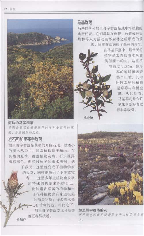 野花:欧非亚大陆交汇地区500多种野花的彩色图鉴