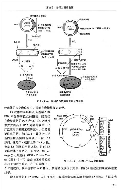 回至 基因工程原理与实验指导(高校教材) (平装)