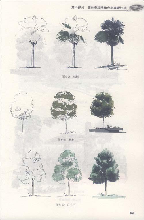 园林景观手绘表现技法(第2版):亚马逊:图书