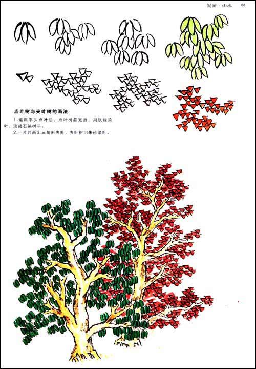 松树的儿童画画法