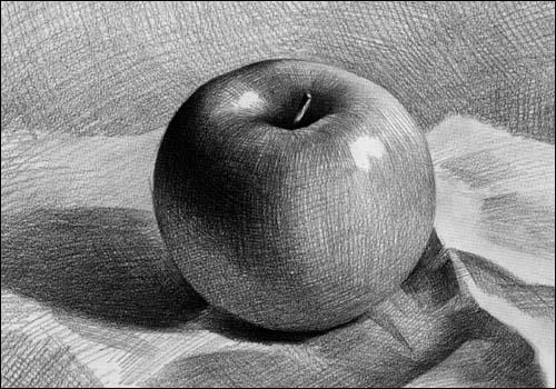 素描苹果画法解析图 苹果logo矢量图 香蕉素描画法步骤图图片