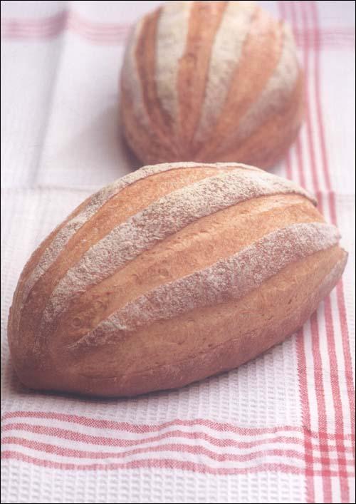 面包新语2
