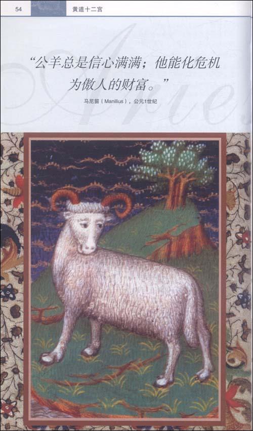 目击者文化指南:占星术