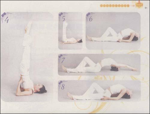 瑜伽四季排毒养生全书