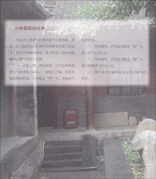 祛病养生易筋经:少林禅医的保健处方