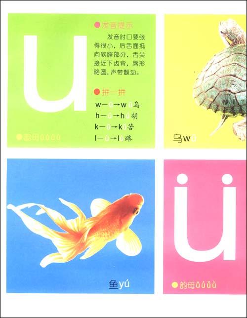 宝宝蛋系列·小孩大书:拼音:亚马逊:图书