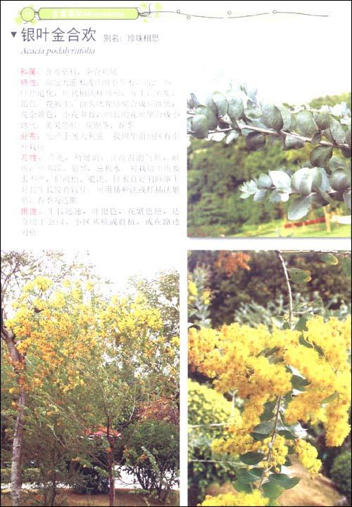 花瓣网秋季风景横屏长图