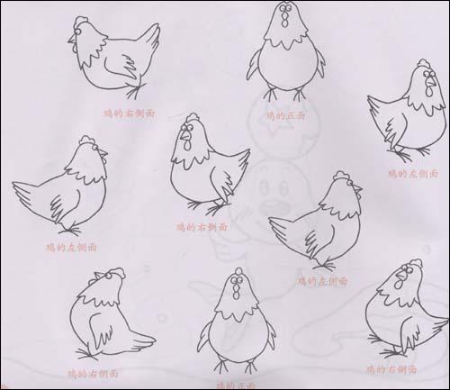 儿童多角度简笔画:动物:亚马逊:图书