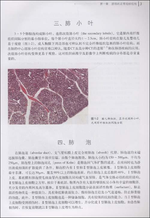 肺非肿瘤性疾病诊断病理学\/刘鸿瑞