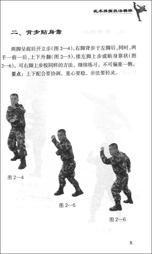 武术摔擒技法精粹