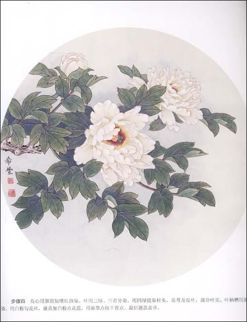 工笔扇面牡丹画法 中国画技法 田希丰著图片