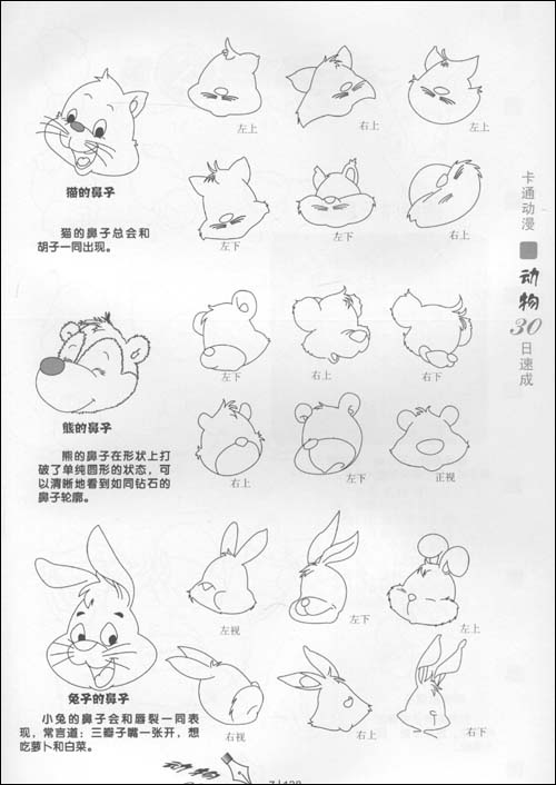 卡通动物的画法