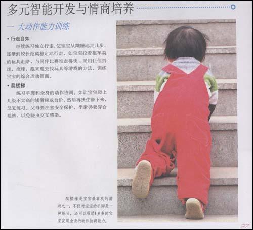 戴淑凤育儿百科:1-3岁宝宝养育全书