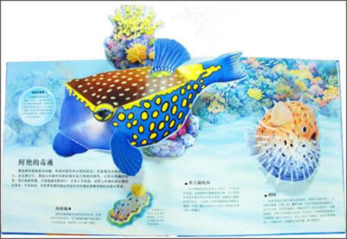 神奇绚彩立体书:海洋动物