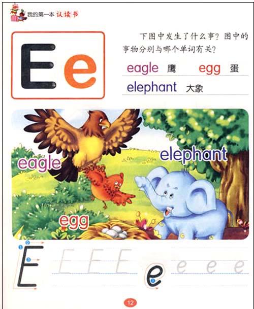 小动物花边_动物花边相框_动物花边简笔画_亿库素材网