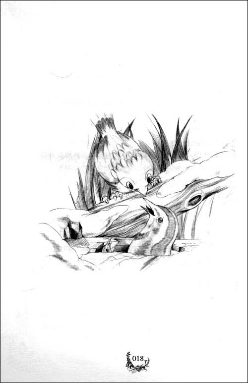 森林与鸽子的手绘海报