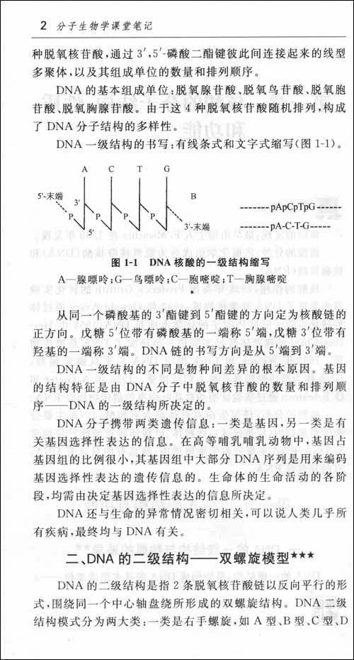 分子生物学课堂笔记