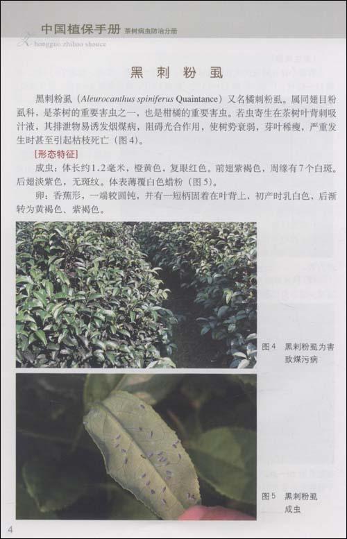 中国植保手册:茶树病虫防治分册:亚马逊:图书