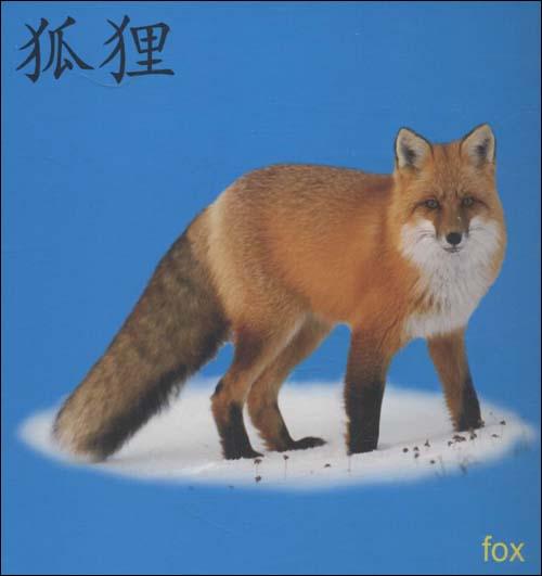 《阳光宝贝翻翻书:动物世界》 蓝山【摘要 书评 试读