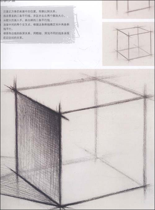 素描单个石膏几何体写生教程(12岁~18岁):亚马逊:图