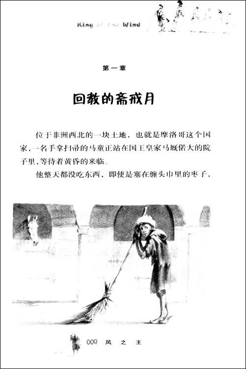 国际大奖小说•升级版:风之王