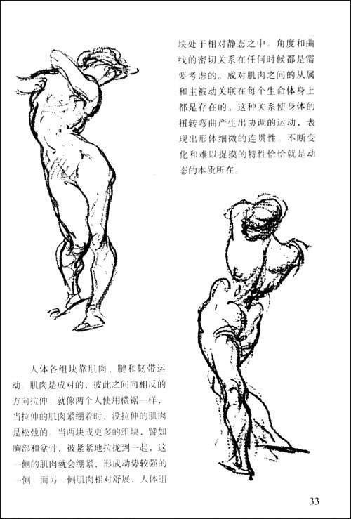伯里曼单个人物速写图片大全 伯里曼画人体