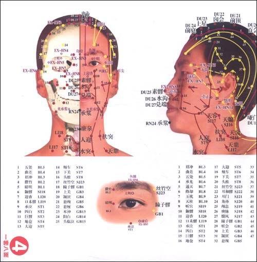 便携式最新国际标准针灸经络穴位挂图