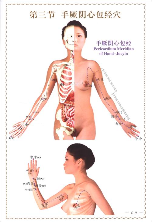 人体经络使用图册