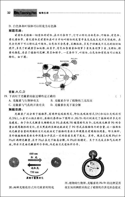 海带孢子囊层结构图
