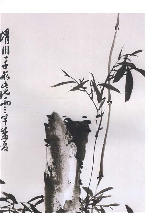中国画兰竹当代名家分享展示图片
