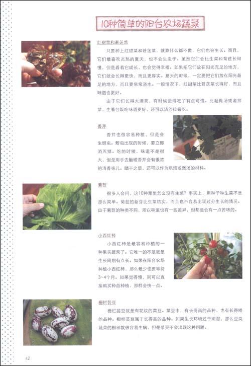 我的幸福农场:阳台种菜DIY