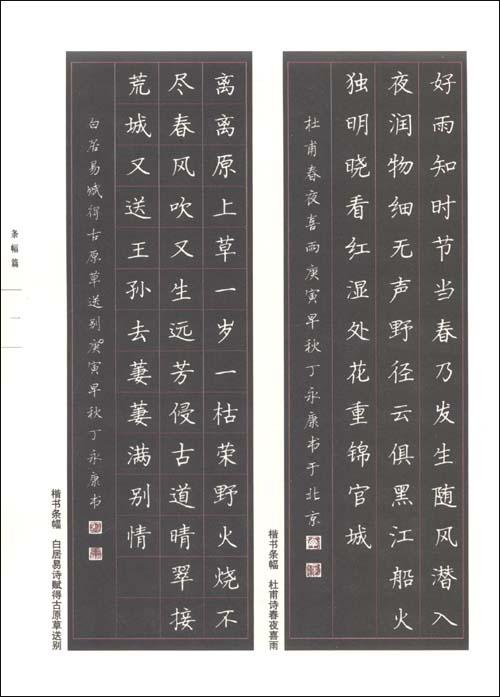 中国硬笔书法名家作品集:丁永康卷:亚马逊:图书