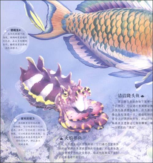 神奇绚彩立体书:海洋动物精装–2011年1月1日