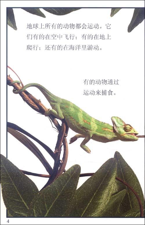 DK儿童目击者•学习阅读4-7岁