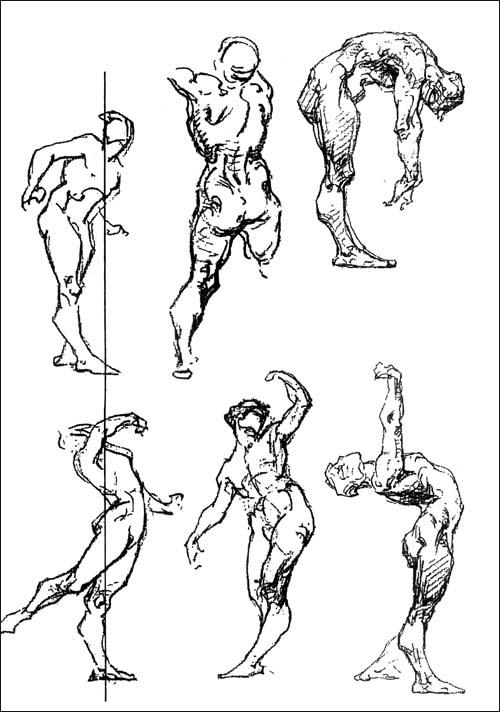 一,人体画法  二,人体素描步骤  三,人体结构线  四,人体骨骼结构