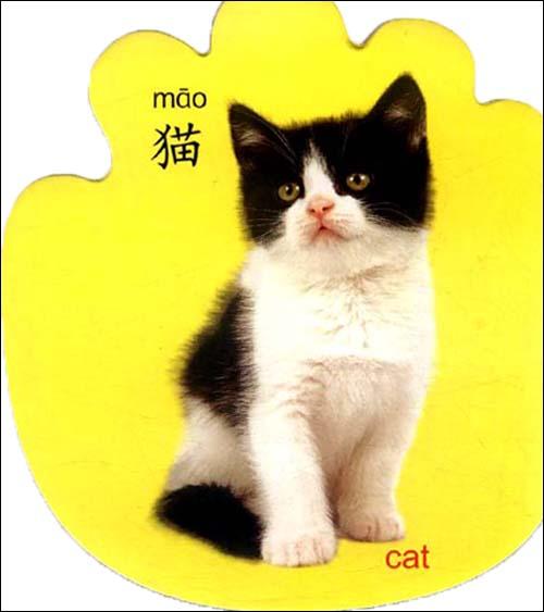 阳光宝贝小巴掌启蒙书:动物乐园平装–2011年1月1日