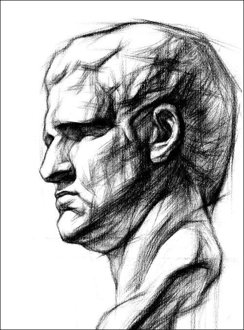 《结构素描范本7:石膏头像结构素描范本(黄金典藏版)
